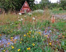 Garten BUND Leonberg