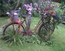 ADFC-Radtour zu den Offenen Gärten