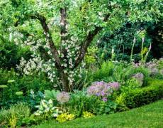 Garten Funke in Ohmden