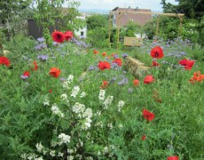 Garten Roth / Brune in Filderstadt