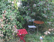 Garten Schick in Leonberg