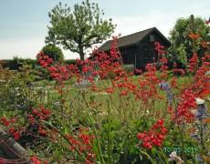 Gartenverein Beckenhau in Esslingen-Liebersbronn