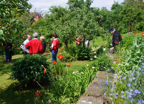 Offene Gärten 2013 - Garten Eppinger - © Pohl