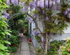 Garten Oster-Eck in Stuttgart-Vaihingen