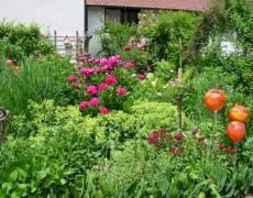 Garten Rieger in Scharnhausen