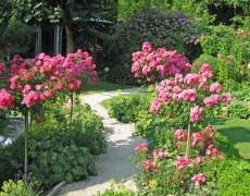 Garten Bauer in Holzmaden