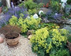 Garten Stumpfrock-Fink in Esslingen