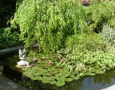 Garten Baier in Winnenden