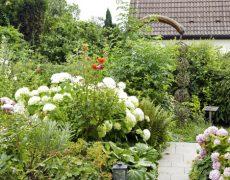 Garten Schnabel in Hemmingen