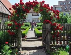 Garten des Museumvereins in Wendlingen-Unterboihingen