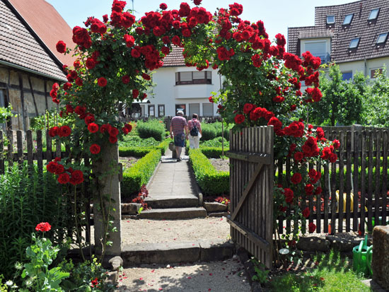 garten_wendlingen_museumsgarten3