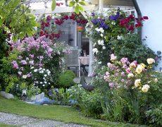 Garten Schmatelka in Heiningen