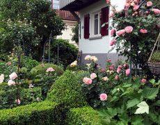 Garten Zelano in Kernen-Stetten
